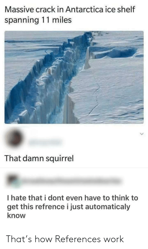 Antarctica: Massive crack in Antarctica ice shelf  spanning 11 miles  That damn squirrel  I hate that i dont even have to think to  get this refrence i just automaticaly  know That's how References work