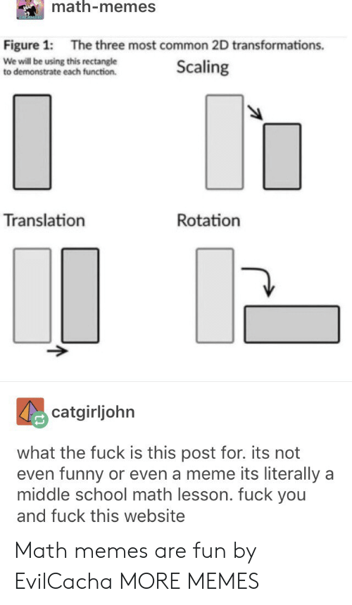 Dank, Fuck You, and Funny: math-memes  Figure 1: The three most common 2D transformations.  We will be using this rectangle  to demonstrate each function.  Scaling  Translation  Rotation  catgirljohrn  what the fuck is this post for. its not  even funny or even a meme its literally a  middle school math lesson. fuck you  and fuck this website Math memes are fun by EvilCacha MORE MEMES