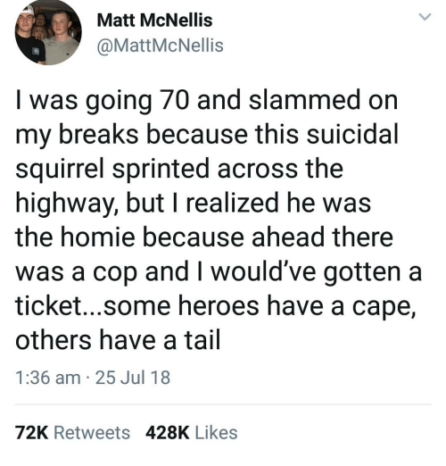 Homie, Memes, and Heroes: Matt McNellis  @MattMcNellis  I was going 70 and slammed on  my breaks because this suicidal  squirrel sprinted across the  highway, but I realized he wa:s  the homie because ahead there  was a cop and I would've gotten a  ticket...some heroes have a cape,  others have a tail  1:36 am 25 Jul 18  72K Retweets 428K Likes