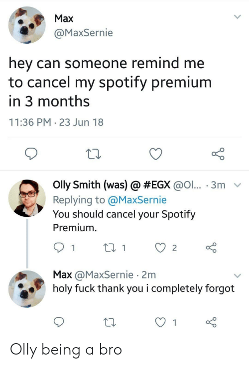 Spotify, Thank You, and Fuck: Max  @MaxSernie  hey can someone remind me  to cancel my spotify premium  in 3 months  11:36 PM 23 Jun 18  olly Smith (was) @ #EGX @ol...-3m-  Replying to @MaxSernie  You should cancel your Spotify  Premium.  Max @MaxSernie 2m  holy fuck thank you i completely forgot Olly being a bro
