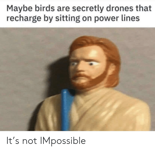Drones: Maybe birds are secretly drones that  recharge by sitting on power lines It's not IMpossible