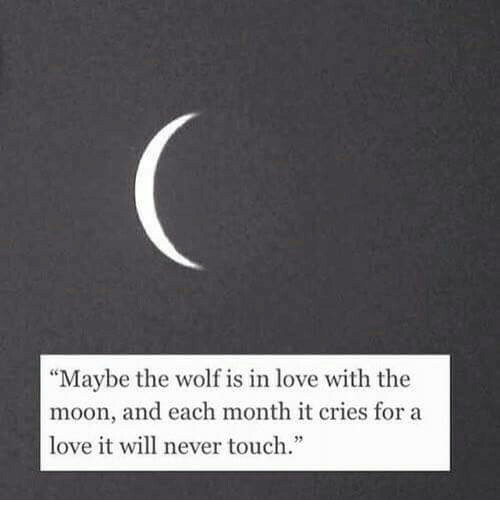 """Love, Moon, and Wolf: """"Maybe the wolf is in love with the  moon, and each month it cries for a  love it will never touch.""""  2"""