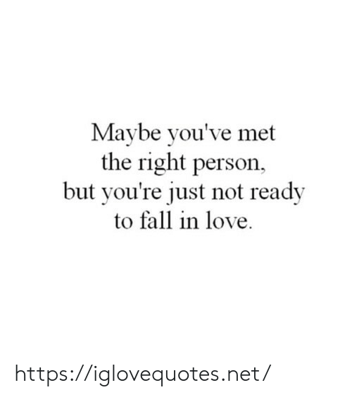 Fall, Love, and Net: Maybe you've met  the right person  but you're just not ready  to fall in love https://iglovequotes.net/