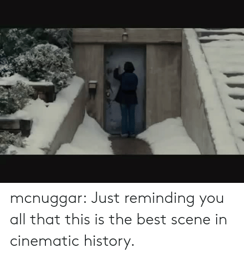 Target, Tumblr, and Best: mcnuggar:  Just reminding you all that this is the best scene in cinematic history.