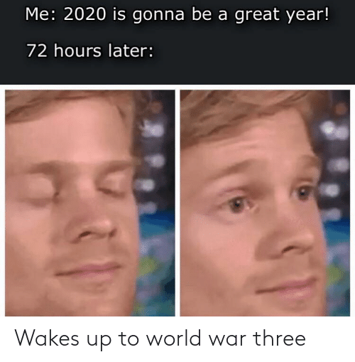 later: Me: 2020 is gonna be a great year!  72 hours later: Wakes up to world war three