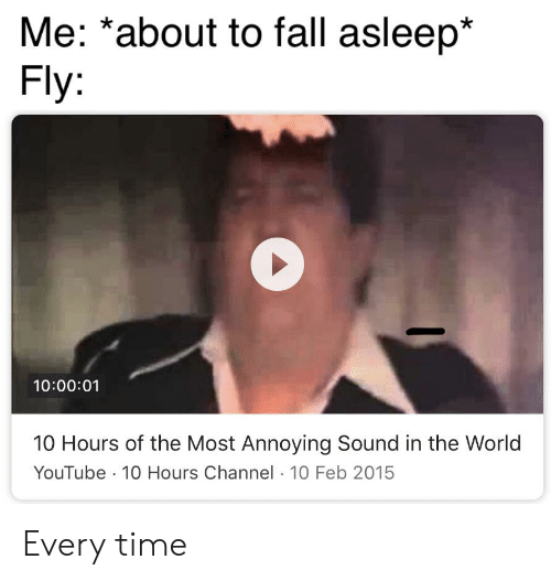 10 Feb: Me: *about to fall asleep*  Fly:  10:00:01  10 Hours of the Most Annoying Sound in the World  YouTube 10 Hours Channel 10 Feb 2015 Every time