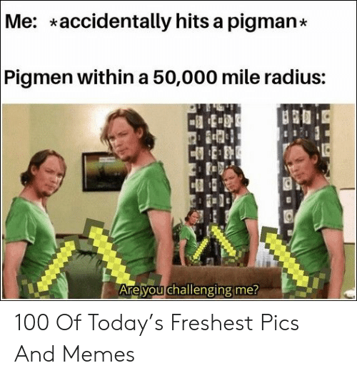 Memes, Today, and Radius: Me: accidentally hits a pigman*  Pigmen within a 50,000 mile radius:  Are you challenging me? 100 Of Today's Freshest Pics And Memes