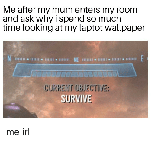 Time, Wallpaper, and Irl: Me after my mum enters my room  and ask why i spend so much  time looking at my laptot wallpaper  lII NE  じURREIT OBJECTIYE:  SURVIVE me irl