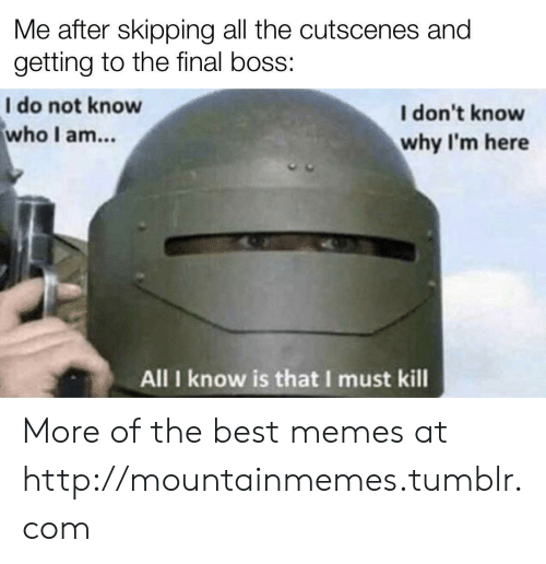 i dont know why: Me after skipping all the cutscenes and  getting to the final boss:  I do not know  who I am...  I don't know  why I'm here  All I know is that I must kill More of the best memes at http://mountainmemes.tumblr.com