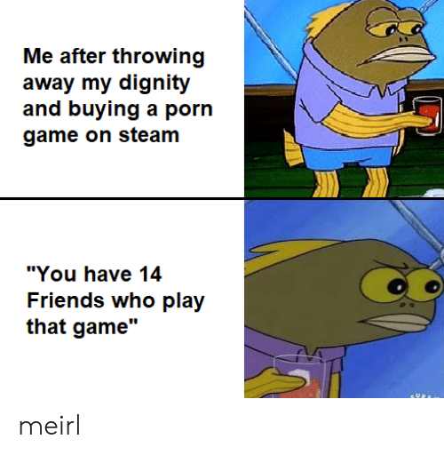 """steam: Me after throwing  away my dignity  and buying a porn  game on steam  """"You have 14  Friends who play  that game"""" meirl"""