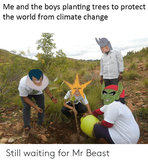 Still Waiting: Me and the boys planting trees to protect  the world from climate change Still waiting for Mr Beast