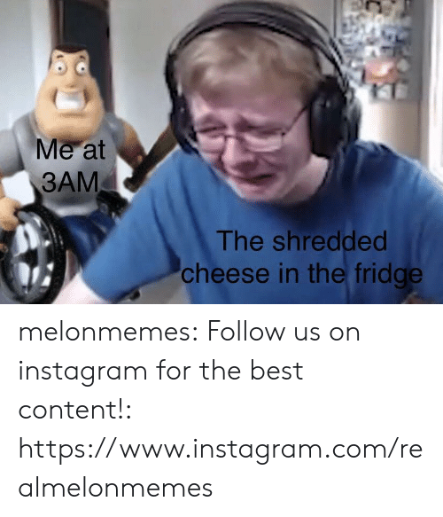 Shredded Cheese: Me at  3AM  The shredded  cheese in the fridge melonmemes:  Follow us on instagram for the best content!: https://www.instagram.com/realmelonmemes