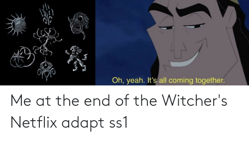 Witchers: Me at the end of the Witcher's Netflix adapt ss1