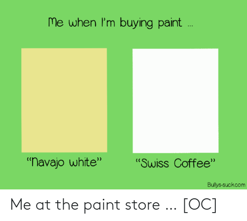 Paint: Me at the paint store … [OC]