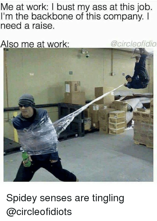 Ass, Memes, and Work: Me at work: I bust my ass at this job.  I'm the backbone of this company. I  need a raise.  Also me at work:  @circleofidio Spidey senses are tingling @circleofidiots