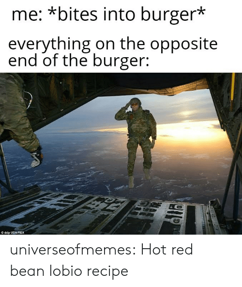 Rex: me: *bites into burger*  everything on the opposite  end of the burger:  ddp USA/REX universeofmemes: Hot red bean lobiorecipe