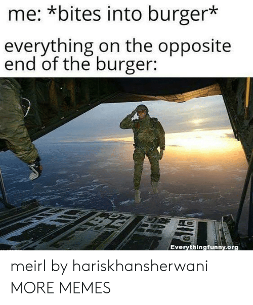 Dank, Memes, and Target: me: *bites into burger*  everything on the opposite  end of the burger:  Everythingfunny.org meirl by hariskhansherwani MORE MEMES