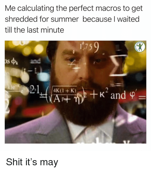 Memes, Shit, and Summer: Me calculating the perfect macros to get  shredded for summer because I waited  till the last minute  RDIO  s4  and  21 Shit it's may