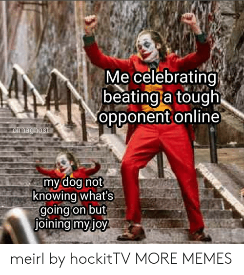 Dank, Memes, and Target: Me celebrating  beating a tough  opponent online  oimaghost  my dog not  knowing what's  going on but  joining myjoy meirl by hockitTV MORE MEMES
