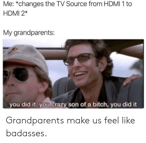Bitch, Crazy, and Hdmi: Me: *changes the TV Source from HDMI 1 to  HDMI 2*  My grandparents:  you did it. you crazy son of a bitch, you did it Grandparents make us feel like badasses.