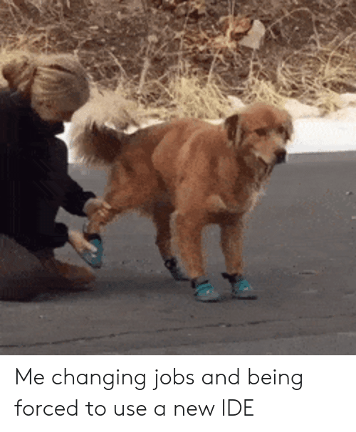 Jobs, Ide, and New: Me changing jobs and being forced to use a new IDE