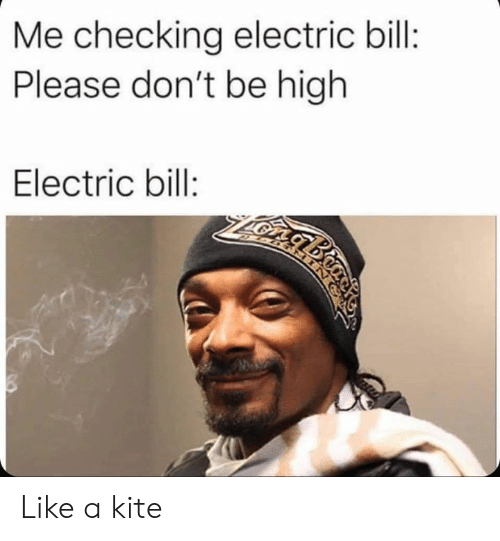Dank, 🤖, and Kite: Me checking electric bill:  Please don't be high  Electric bill:  2ARTMING Like a kite