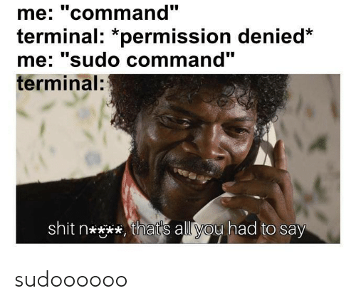 """Shit, Terminal, and All: me: """"command""""  terminal: *permission denied  me' sudo command  terminal:  shit n****, that's all you had to say sudoooooo"""