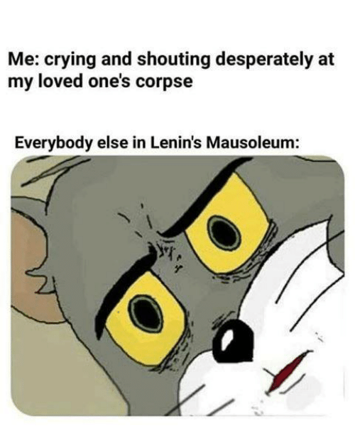 shouting: Me: crying and shouting desperately at  my loved one's corpse  Everybody else in Lenin's Mausoleum:
