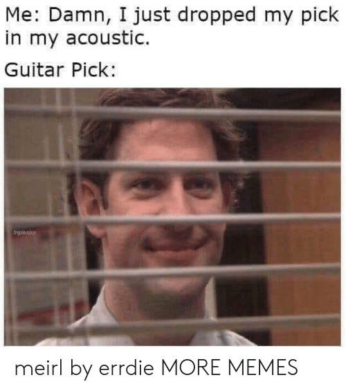 Dank, Memes, and Target: Me: Damn, I just dropped my pick  in my acoustic.  Guitar Pick: meirl by errdie MORE MEMES
