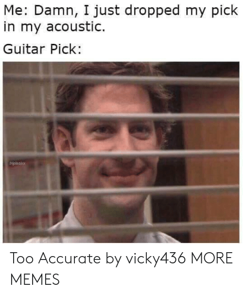 Dank, Memes, and Target: Me: Damn, I just dropped my pick  in my acoustic.  Guitar Pick: Too Accurate by vicky436 MORE MEMES