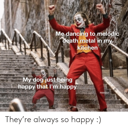 kitchen: Me dancing to melodic  death metal in my  kitchen  My dog just being  happy that l'm happy  PERFECT They're always so happy :)
