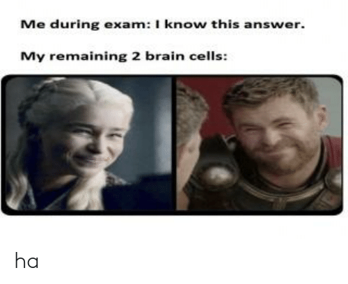 Brain, Answer, and Brain Cells: Me during exam: I know this answer.  My remaining 2 brain cells: ha