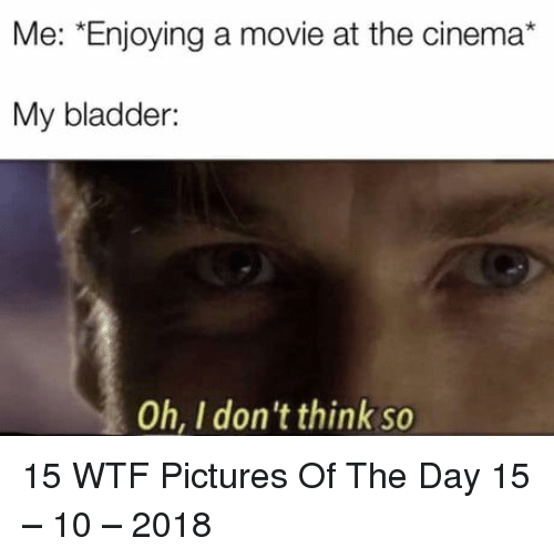 Wtf, Movie, and Pictures: Me: *Enjoying a movie at the cinema*  My bladder:  Oh, I don't think so 15 WTF Pictures Of The Day 15 – 10 – 2018