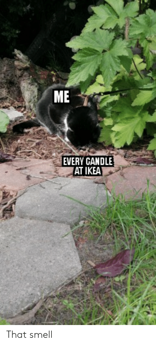 IKEA: ME  EVERY CANDLE  AT IKEA That smell
