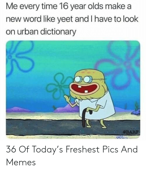 Urban Dictionary: Me every time 16 year olds make a  new word like yeet and I have to look  on urban dictionary  BAR 36 Of Today's Freshest Pics And Memes