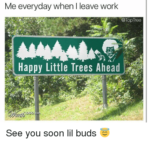 Memes, Soon..., and Work: Me everyday when l leave work  @Top Tree  Happy Little Trees Ahead See you soon lil buds 😇