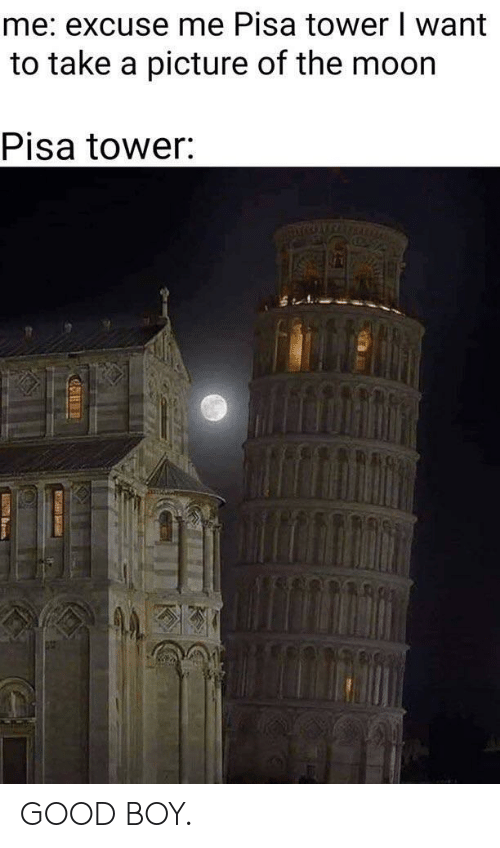 take a picture: me: excuse me Pisa tower I want  to take a picture of the moor  Pisa tower GOOD BOY.