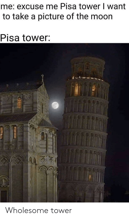 take a picture: me: excuse me Pisa tower I want  to take a picture of the moor  Pisa tower Wholesome tower