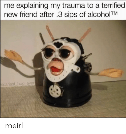 sips: me explaining my trauma to a terrified  new friend after .3 sips of alcoholTM  scariest bug ever meirl