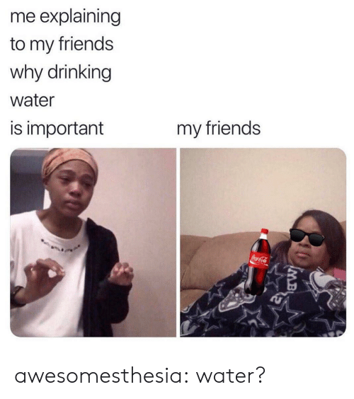 drinking water: me explaining  to my friends  why drinking  water  my friends  is important  CocaCola awesomesthesia:  water?