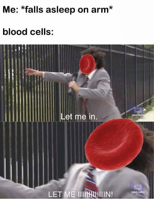 Memes, 🤖, and Blood: Me: *falls asleep on arm*  blood cells:  let me in  LET ME IIIIN