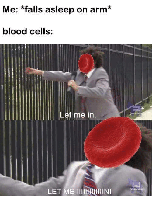 Blood, Arm, and Let Me In: Me: *falls asleep on arm*  blood cells:  let me in  LET ME IllHullIIN!