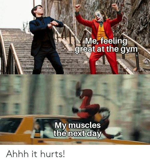 the next day: Me, feeling  great at the gym  My muscles  the next day Ahhh it hurts!