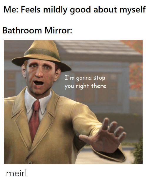 About Myself: Me: Feels mildly good about myself  Bathroom Mirror:  I'm gonna stop  you right there meirl