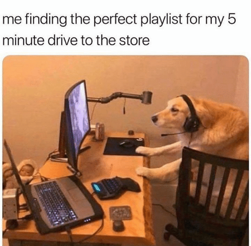 Memes, Drive, and 🤖: me finding the perfect playlist for my 5  minute drive to the store