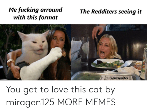 Bravo: Me fucking arround  with this format  The Redditers seeing it  u/miragen125  OO BRAVO You get to love this cat by miragen125 MORE MEMES