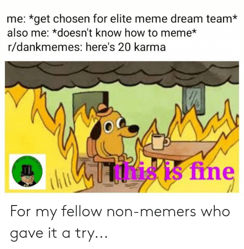 Meme, How To, and Karma: me: *get chosen for elite meme dream team*  also me: *doesn't know how to meme*  r/dankmemes: here's 20 karma  this is fine For my fellow non-memers who gave it a try...