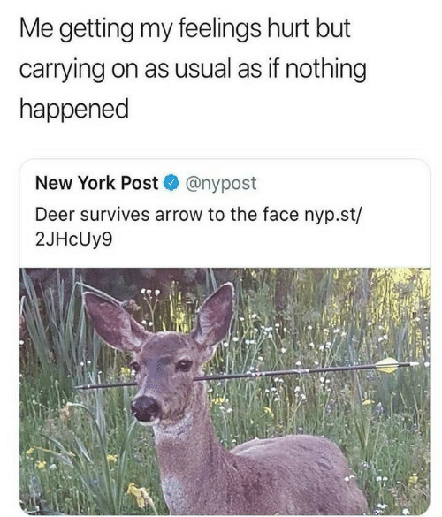 usual: Me getting my feelings hurt but  carrying on as usual as if nothing  happened  New York Post @nypost  Deer survives arrow to the face nyp.st/  2JHcUy9