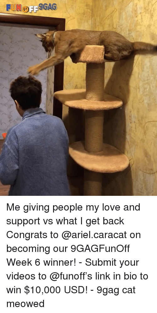 9gag, Ariel, and Love: Me giving people my love and support vs what I get back Congrats to @ariel.caracat on becoming our 9GAGFunOff Week 6 winner! - Submit your videos to @funoff's link in bio to win $10,000 USD! - 9gag cat meowed