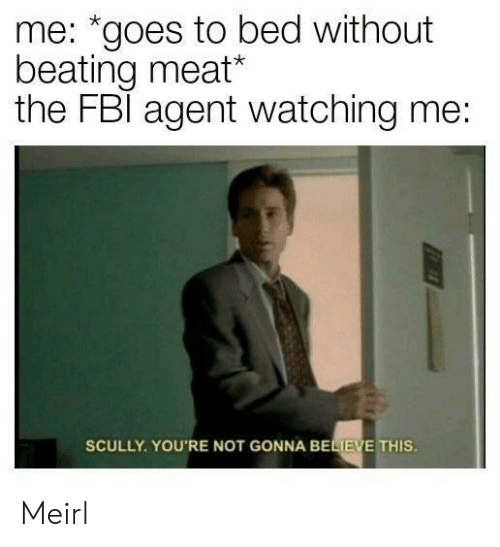 """MeIRL, Believe, and Meat: me: """"goes to bed without  beating meat*  the FBl agent watching me:  SCULLY. YOU'RE NOT GONNA BELIEVE THIS Meirl"""